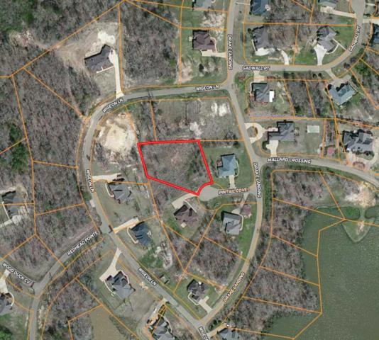 10 Pintail Cv #10, Raymond, MS 39154 (MLS #319535) :: Mississippi United Realty