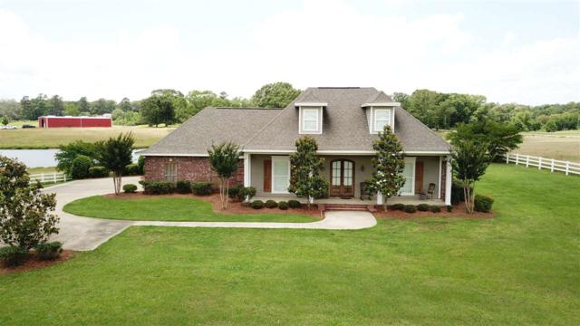 1180 Cindy Dr, Terry, MS 39170 (MLS #320268) :: RE/MAX Alliance