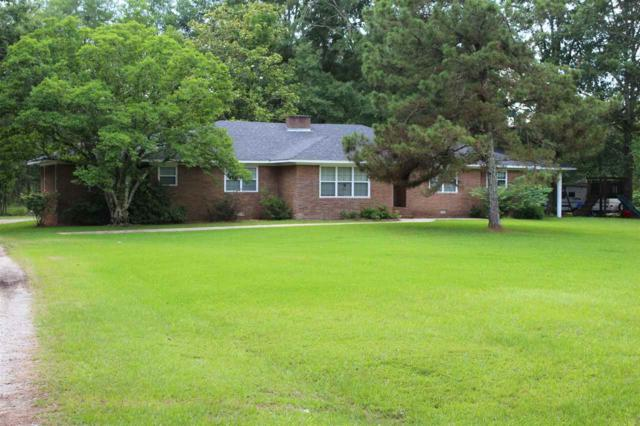 217 Mimosa Dr, Raleigh, MS 39153 (MLS #320783) :: RE/MAX Alliance