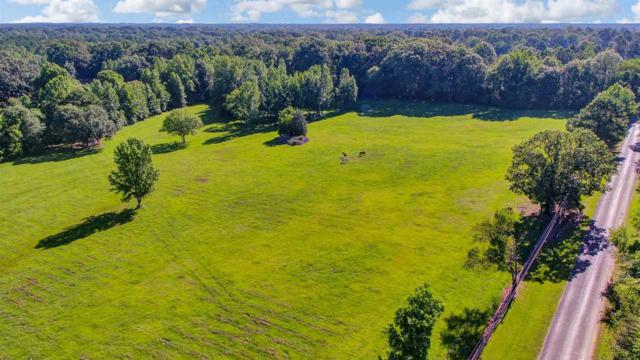 2120 B George Rd, Terry, MS 39170 (MLS #320977) :: Three Rivers Real Estate