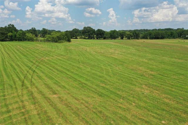 Lot 2 Hwy 22, Flora, MS 39071 (MLS #321257) :: RE/MAX Alliance