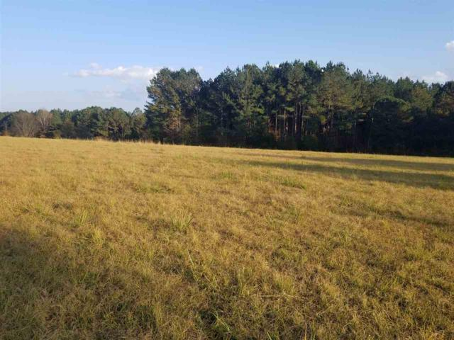 1016 Old Hwy 16, Canton, MS 39046 (MLS #321820) :: RE/MAX Alliance