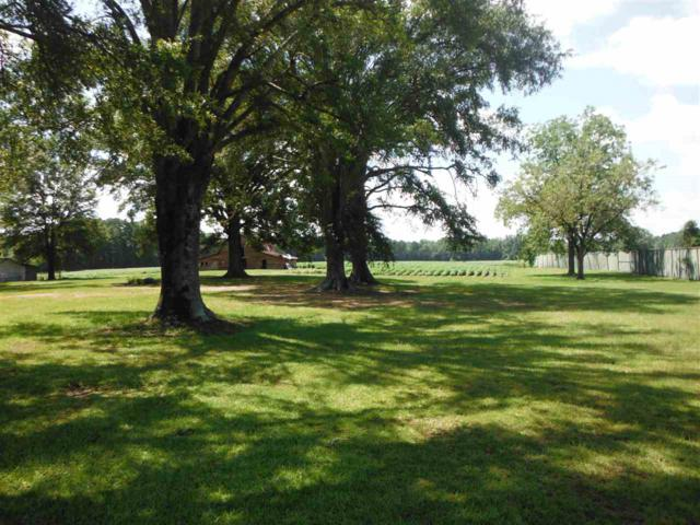 811 Highway 16 East, Carthage, MS 39051 (MLS #322070) :: RE/MAX Alliance