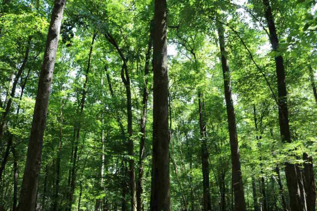 Attala County Rd 4201, Durant, MS 39063 (MLS #322496) :: RE/MAX Alliance