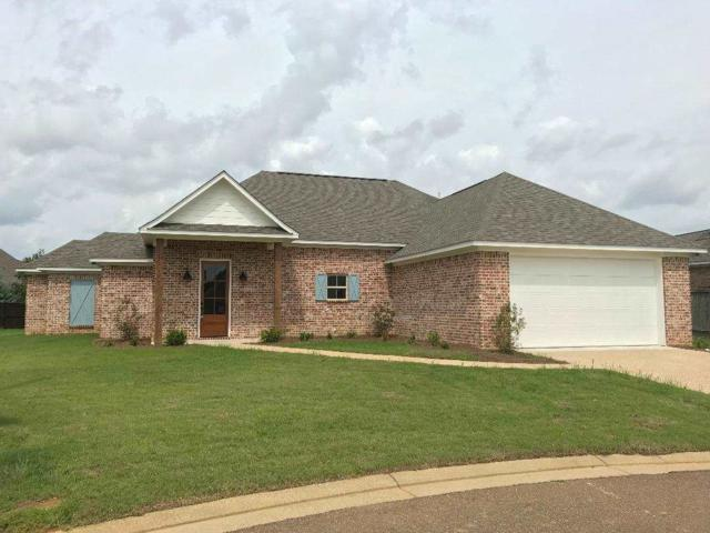 102 Crown Dr, Pearl, MS 39208 (MLS #323009) :: RE/MAX Alliance