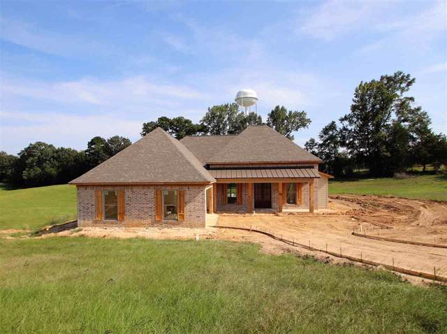 304 Driftwood Ln, Florence, MS 39073 (MLS #323987) :: RE/MAX Alliance
