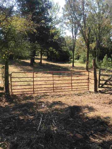 3152 Hwy 43 North, Canton, MS 39046 (MLS #324669) :: RE/MAX Alliance