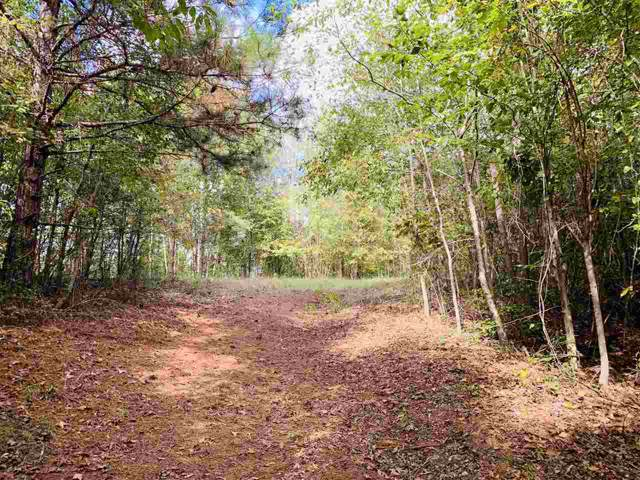 Mars Hill Rd, Carthage, MS 39051 (MLS #324842) :: RE/MAX Alliance
