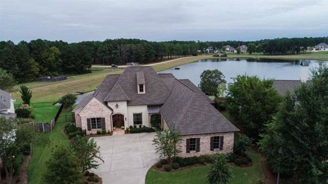 125 Mont Helena Dr, Madison, MS 39110 (MLS #324852) :: Mississippi United Realty