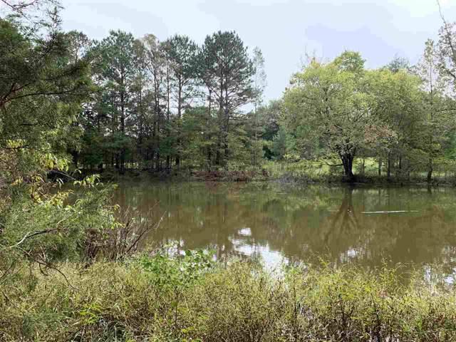 Big Creek Rd, Raymond, MS 39154 (MLS #324905) :: RE/MAX Alliance