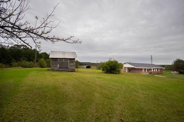 138 Jack Hall Rd, Mt. Olive, MS 39119 (MLS #325314) :: RE/MAX Alliance