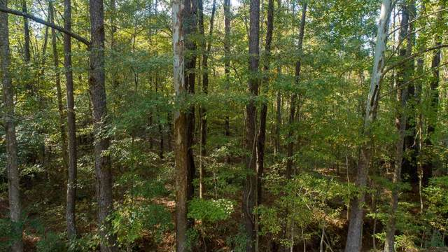 Rankin Hills Rd 30 And 31, Florence, MS 39073 (MLS #325434) :: Mississippi United Realty