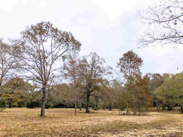 Spring Branch Dr Tract 3, Brandon, MS 39047 (MLS #325691) :: RE/MAX Alliance
