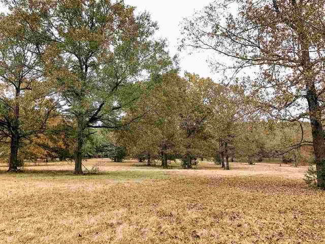 Spring Branch Dr Tract 4, Brandon, MS 39047 (MLS #325692) :: RE/MAX Alliance
