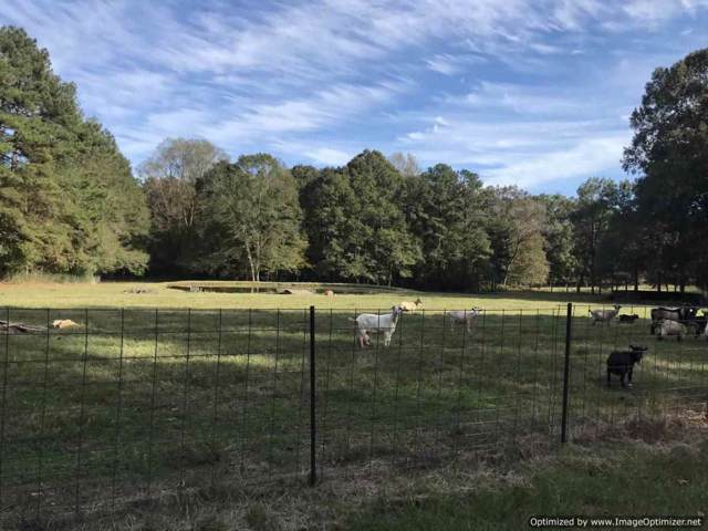 304b Smith Ferry Rd, Sontag, MS 39665 (MLS #325814) :: RE/MAX Alliance