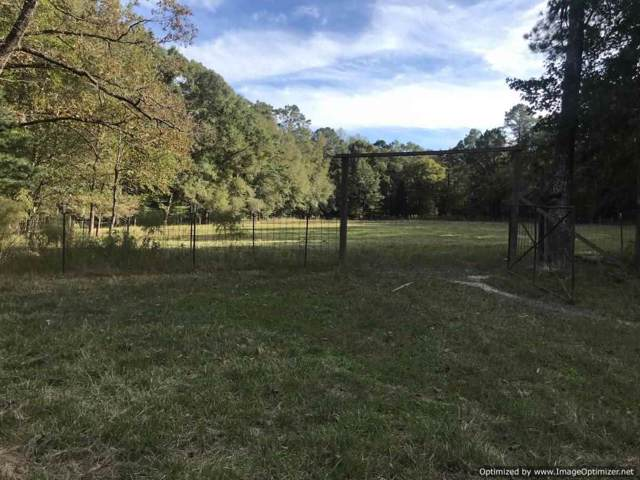 304A Smith Ferry Rd, Sontag, MS 39665 (MLS #325819) :: RE/MAX Alliance
