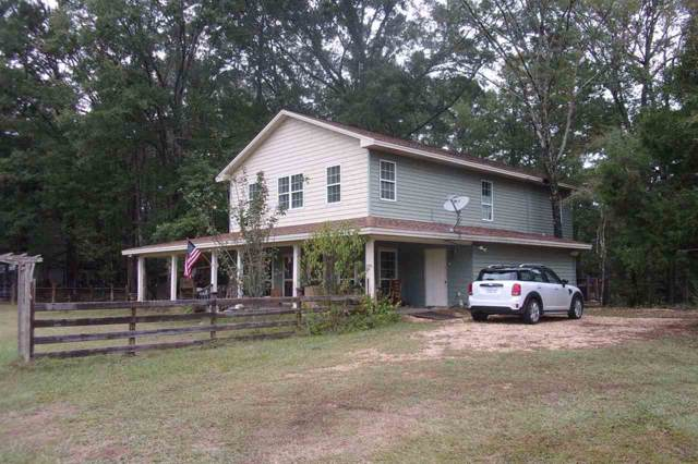 3159 Hwy 43 A, Silver Creek, MS 39663 (MLS #326002) :: RE/MAX Alliance