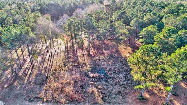 0 Hwy 541 Hwy, Mendenhall, MS 39114 (MLS #326138) :: RE/MAX Alliance