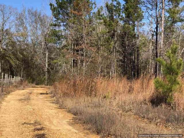 789 Denton Trail, Brookhaven, MS 39601 (MLS #326442) :: RE/MAX Alliance