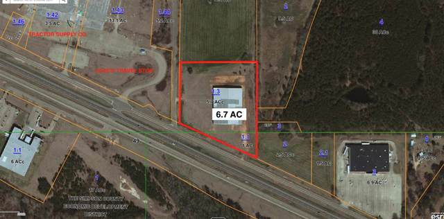 Simpson Hwy 49, Magee, MS 39111 (MLS #327134) :: RE/MAX Alliance