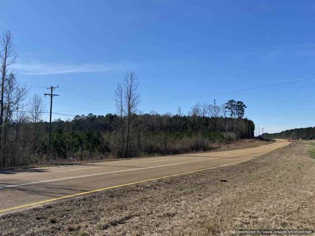 1205A Hwy 84, Brookhaven, MS 39601 (MLS #327203) :: RE/MAX Alliance