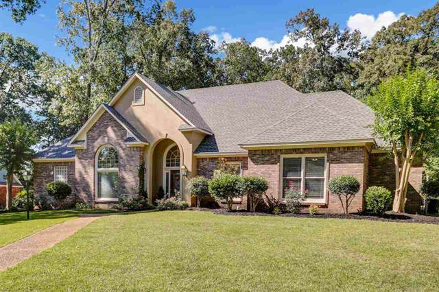 113 Trace Ridge Dr, Clinton, MS 39056 (MLS #327257) :: RE/MAX Alliance