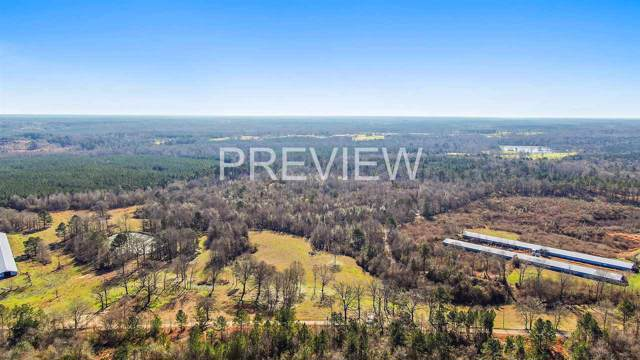 Hayman Lake Rd, Mendenhall, MS 39114 (MLS #327309) :: RE/MAX Alliance