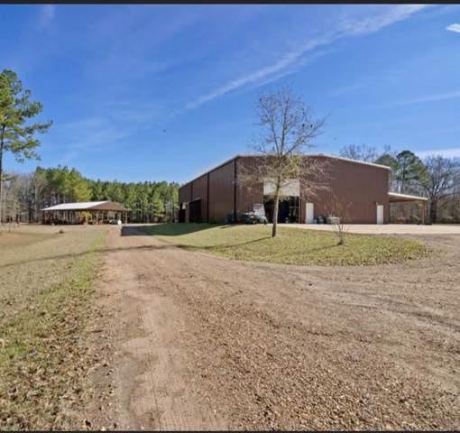 695 White Rd 695 White Road, Florence, MS 39073 (MLS #327368) :: RE/MAX Alliance