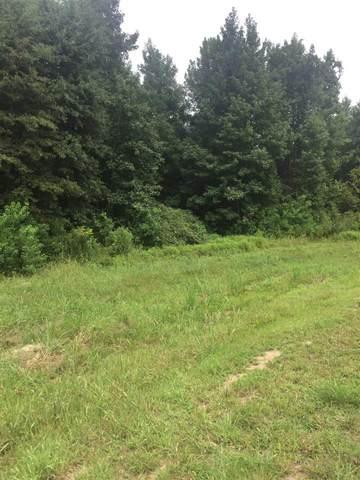 Lot 3 Green Trace Cv Lot 3 Bridgewat, Ridgeland, MS 39157 (MLS #327654) :: eXp Realty