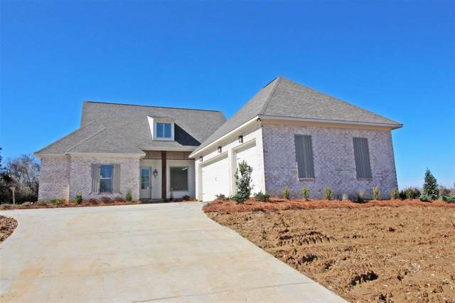 113 Coventry Ln, Canton, MS 39046 (MLS #327756) :: RE/MAX Alliance