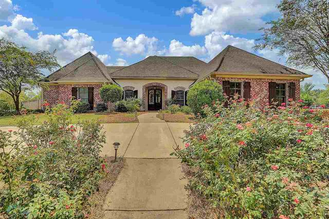 116 Carrick Ave, Madison, MS 39110 (MLS #327905) :: RE/MAX Alliance