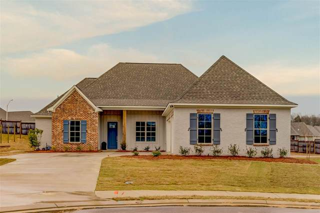 171 Catherine Blvd, Clinton, MS 39056 (MLS #327923) :: RE/MAX Alliance