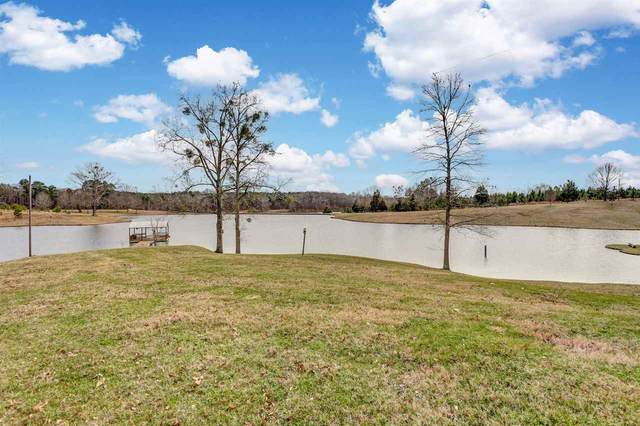 7692 Anderson Rd, Edwards, MS 39066 (MLS #328173) :: RE/MAX Alliance