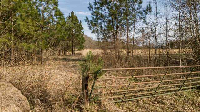 000 Glenfield Rd, Canton, MS 39046 (MLS #328211) :: RE/MAX Alliance