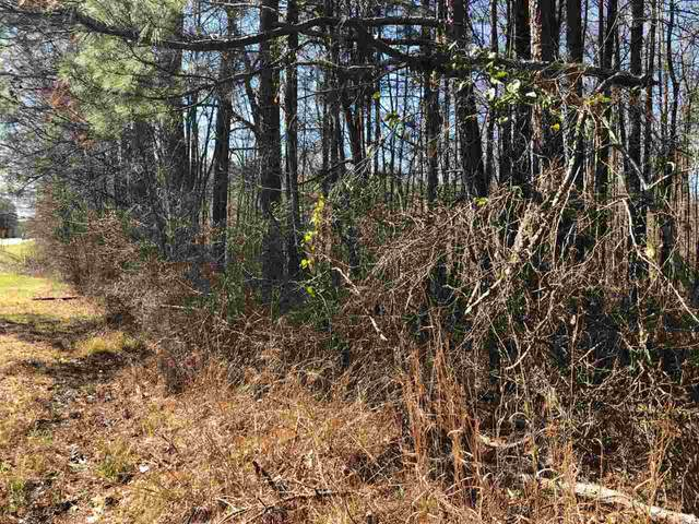 01 Hwy 35 S, Forest, MS 39074 (MLS #328319) :: RE/MAX Alliance