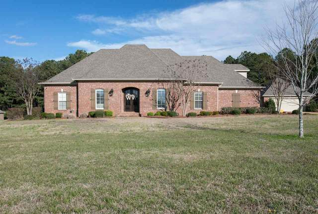 133 Beatrice Ln, Brandon, MS 39047 (MLS #328376) :: RE/MAX Alliance