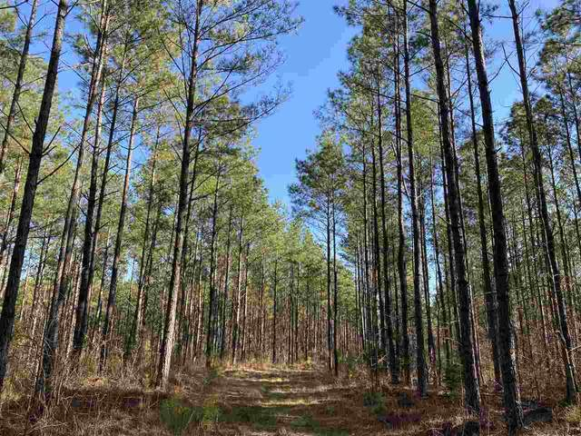 Hwy 9, Water Valley, MS 38965 (MLS #328564) :: RE/MAX Alliance