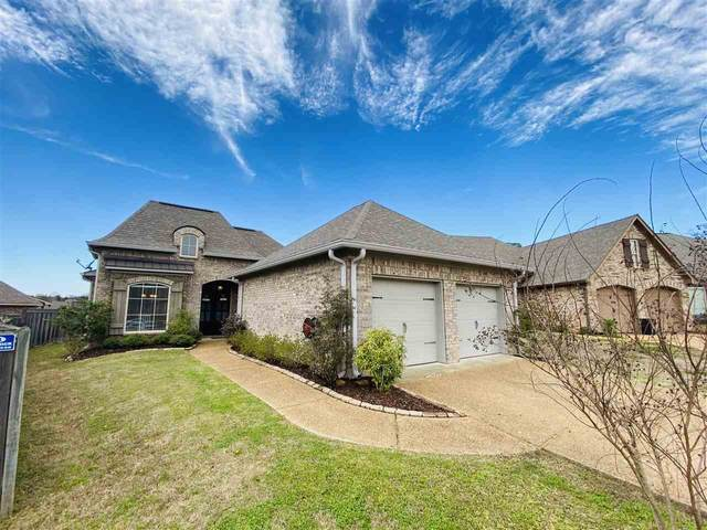 303 Turny Cove, Brandon, MS 39042 (MLS #328602) :: List For Less MS