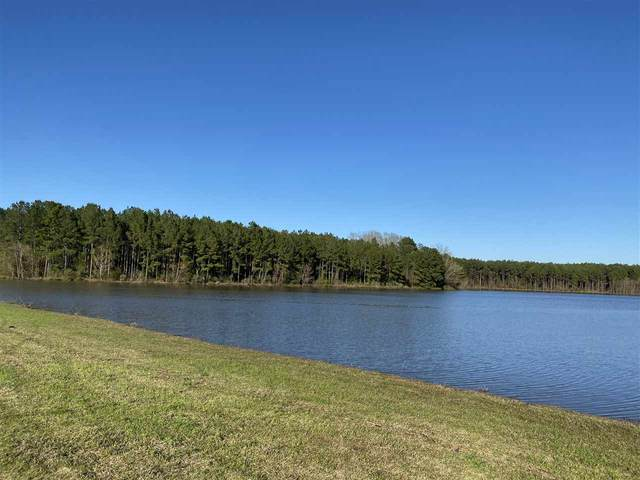 2168 Highway 22 Hwy, Canton, MS 39046 (MLS #328618) :: RE/MAX Alliance