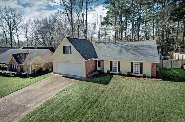 111 Lowe Cir, Clinton, MS 39056 (MLS #328633) :: List For Less MS
