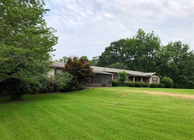 219 Main St, Walnut Grove, MS 39189 (MLS #328715) :: Three Rivers Real Estate
