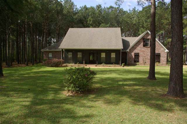 109 Panther Cv, Canton, MS 39046 (MLS #329001) :: Three Rivers Real Estate