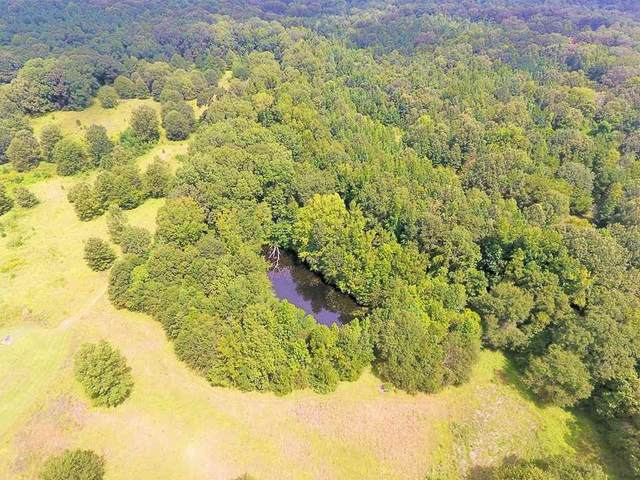 2079 Cox Ferry Rd, Flora, MS 39071 (MLS #329188) :: List For Less MS
