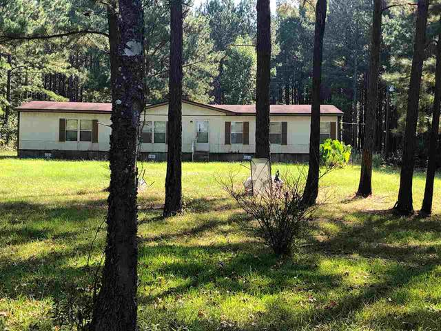 254 Old Hwy 35, Forest, MS 39074 (MLS #329356) :: RE/MAX Alliance