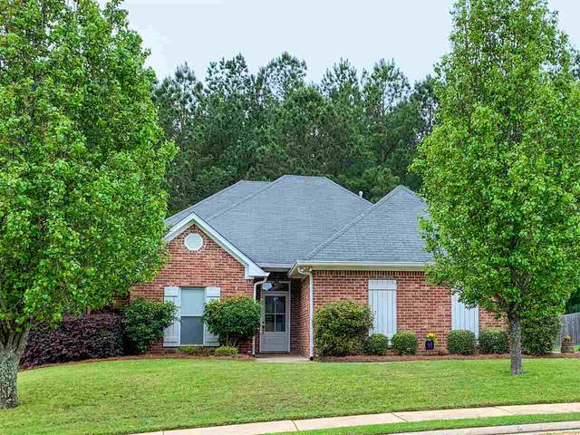 103 Ashton Dr, Brandon, MS 39047 (MLS #329377) :: List For Less MS