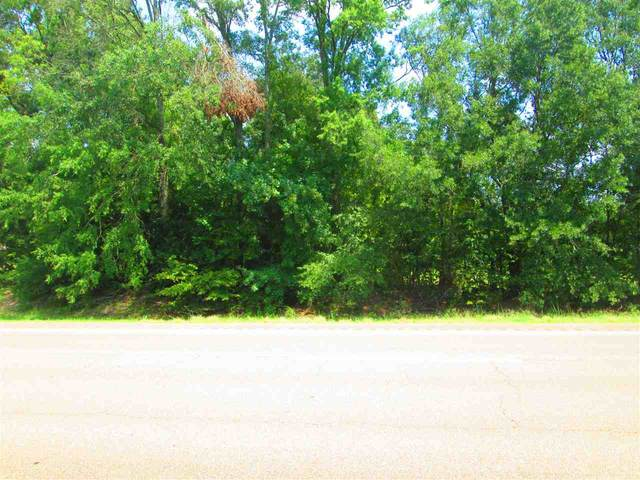 NW Hwy 49 North Metes & Bounds, Clinton, MS 39213 (MLS #329405) :: Mississippi United Realty