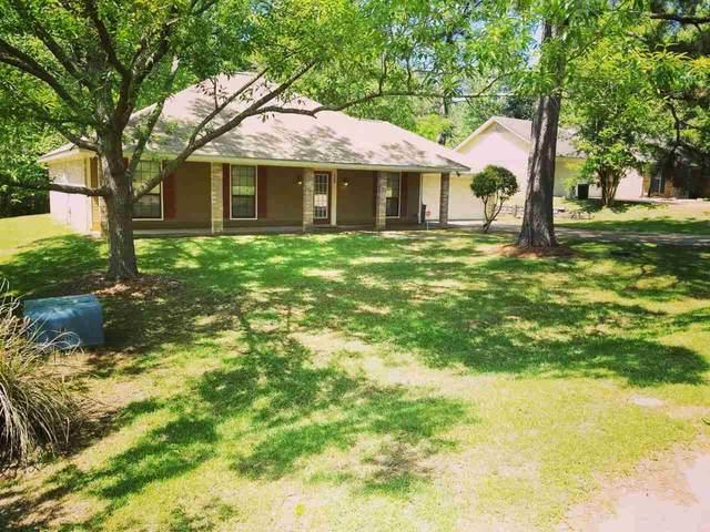 668 Dorothy Ln, Byram, MS 39272 (MLS #329437) :: Three Rivers Real Estate