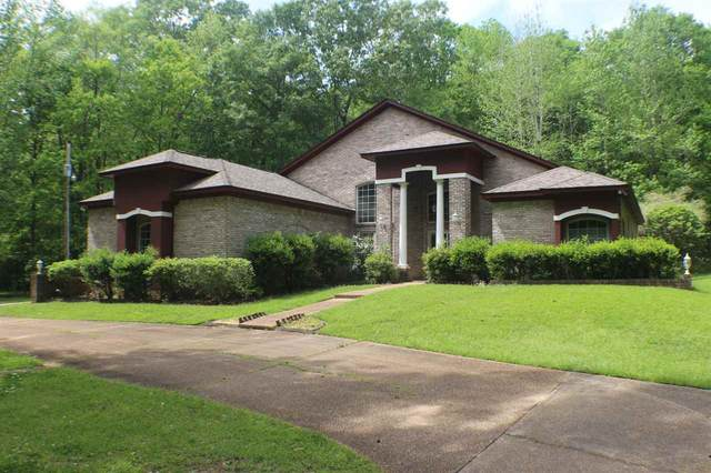 422 Springwood Cir, Terry, MS 39170 (MLS #329485) :: RE/MAX Alliance