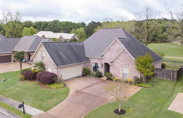 106 Grandeur Dr, Brandon, MS 39042 (MLS #329564) :: RE/MAX Alliance
