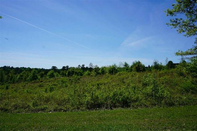 Airport Rd #00, Carthage, MS 39051 (MLS #329580) :: RE/MAX Alliance